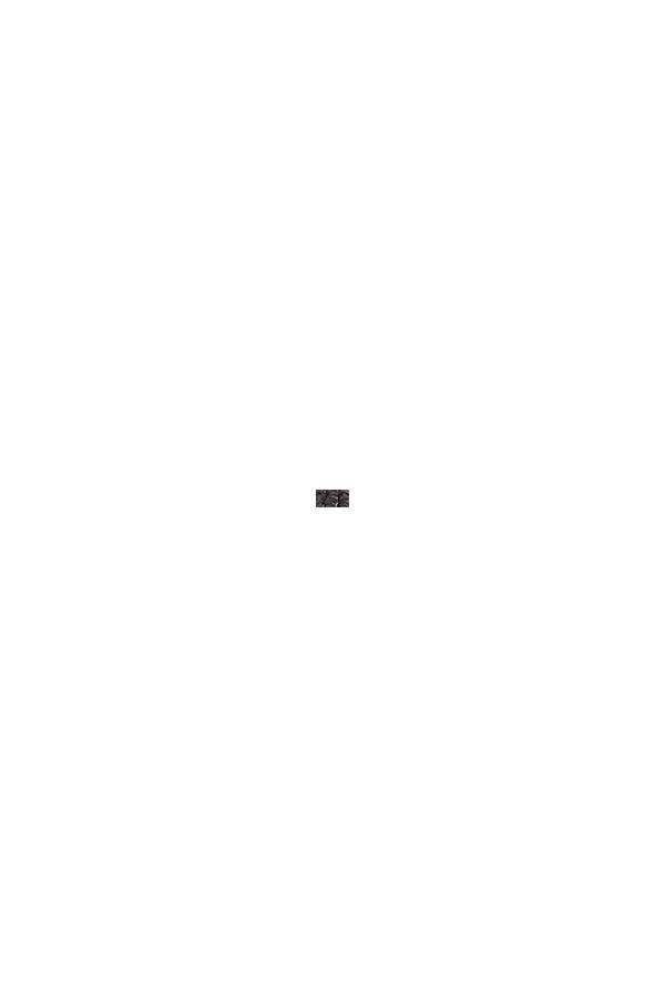Schlauchkupplung für die Verbindung von 2 FLEXI PRO BLACK